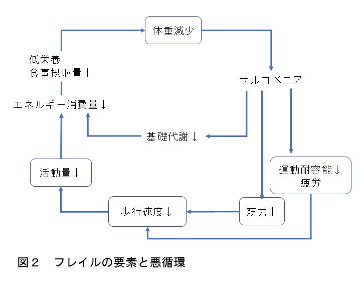 図2 フレイルの要素と悪循環