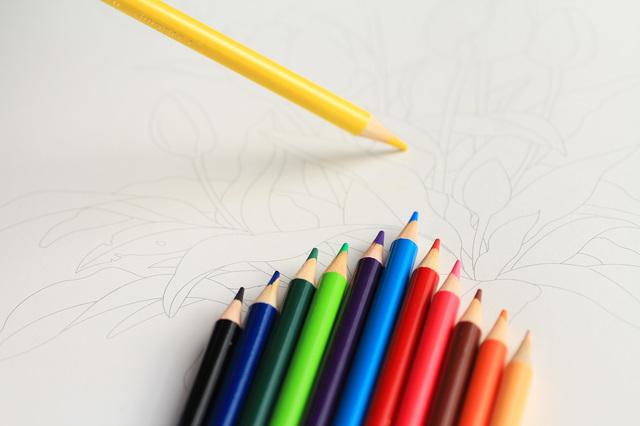 筆圧と素材に注目 塗り絵を治療的な作業療法に セラピスト